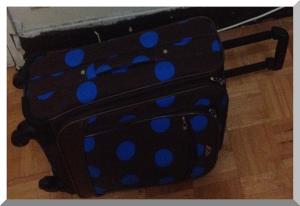 travel_hand_luggage