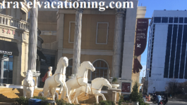 Experience  Atlantic City Vacation