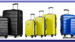 Travel Luggage Brief History